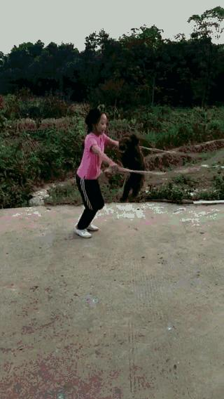 funny gif with animals
